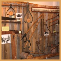 Lumber exhibit, first floor.